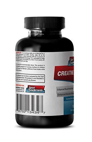 Creatine Monohydrate Capsules - Creatine Powder 100mg - Premium Creatine Powder to Promote Weight Gains and Stamina (1 Bottle)
