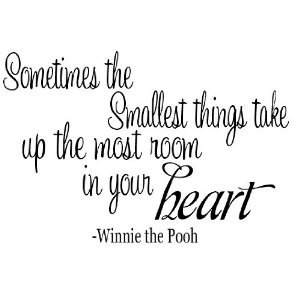 Amazon Com Sometimes The Smallest Things Winnie The Pooh