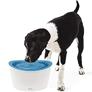 Zeus Fresh & Clear Elevated Dog and Cat Water Dispenser, Large Drinking Water Fountain with Purifying Filter, 6L Capacity (B004OHQUUY) | Amazon Products