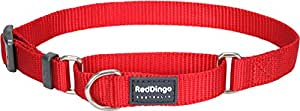 Red Dingo Classic Martingale Dog Collar, Large, Red