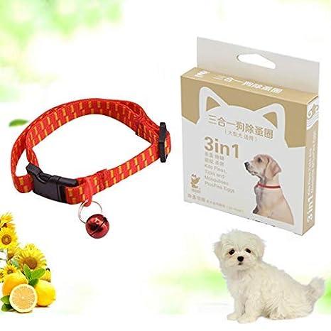 Koojawind Collar De Pulgas Y Garrapatas para Perros Y Gatos, ProteccióN Segura De Las Mascotas contra Las Picaduras De Plagas Infestaciones Larvas ...