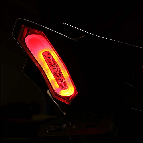 - DMP 2015-2019 Yamaha YZF-R1 YZF-R1M YZF-R1S 2017-2019 Yamaha YZF-R6 Smoked Integrated LED Tail Light - 905-6749D