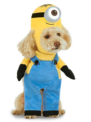 Minion Stuart Arms Pet Suit, X-Small]()