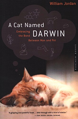 A Cat Named Darwin: Embracing the Bond Between Man and (Jordan Cat)