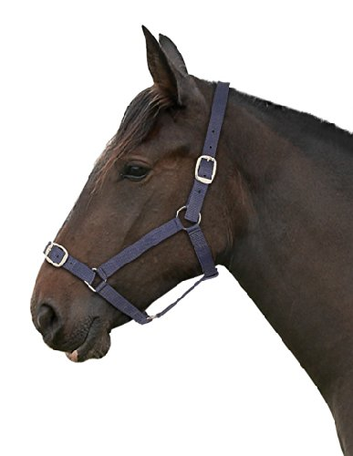 Red Gallop Basic Nylon Headcollar and Lead Rope Set Pony Size