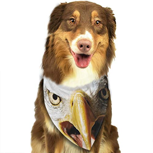 FRTSFLEE Dog Bandana Bald Eagle Scarves Accessories Decoration for Pet Cats and Puppies