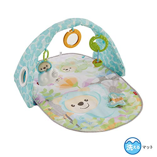 Fisher-Price Butterfly Dreams Musical Playtime Gym Amazon Exclusive