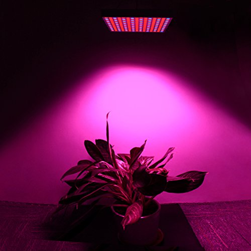 412UBxVTo3L - 45W LED Grow Light, UNIFUN New Light Plant Bulbs Plant Growing Bulb for Hydroponic Aquatic Indoor Plants