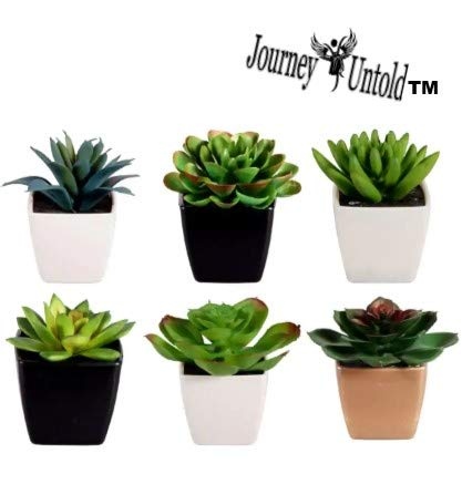 Toy Succulents Unique (Bonus HPTB Exclusive Garden Fairy) Succulent Artificial Potted House Indoor Bulk Garden Mini Small Planter Plant Aloe Cactus (Collection of 5) A ()