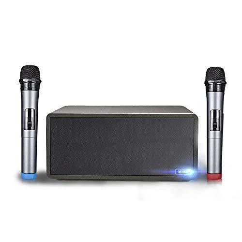 LDJC Wireless Microphone, Handheld Microphone, Bluetooth Audio Dedicated USB Playback Microphone for Computer, Home, Karaoke, Mobile Phone, Amplifier