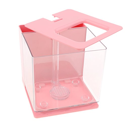 D DOLITY Cuenco de Acuario Complimentos Transparente con Ángulo de Visión Perfecto Cómodo - Rosado, 16x18x16cm