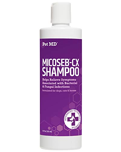 Pet MD Micoseb-CX Medicated Shampoo for Dogs, Cats, Horses with Miconazole, Chlorhexidine for Fungal & Bacterial Skin Infection Treatment of Yeast, Ringworm, Mange, Acne - 12 oz (Large Dog Shampoo)