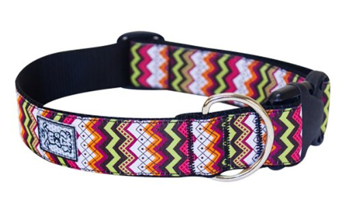 RC Pet Products 1-1/2-Inch Dog Clip Collar, Large, Tribeca
