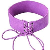 Hunputa Vintage Chic Bandage Choker Harajuku Velvet Belt Collar Necklace for Women Gothic Harness Necklace (Purple)
