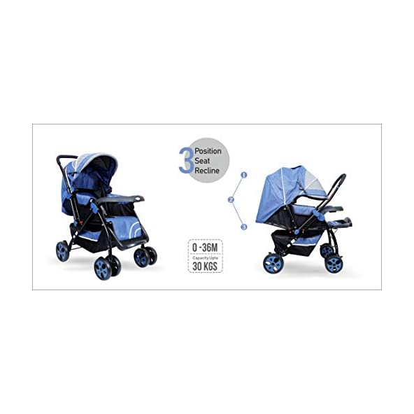 1st Step Baby Pram Cum Stroller with Canopy – 3 Point Safety Harness/Reversible Handle Bar/Reclining Seat/Extended Canopy/Adjustable Leg Rest/Blue Grey