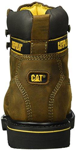 Hombre Botas St Marrón Holton Dark S3 Brown Cat para Cortas w7TYtqR