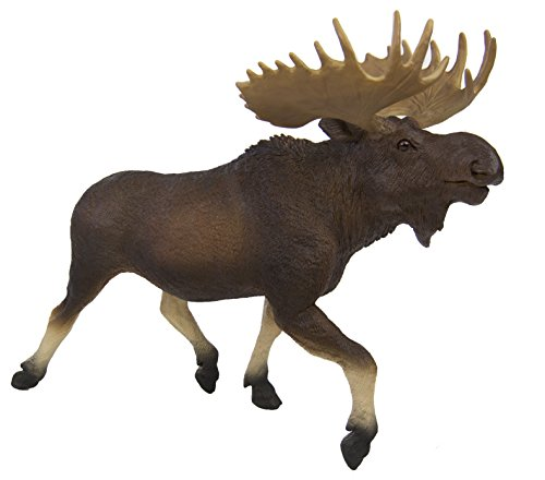 Safari Ltd Wildlife Wonders Moose -