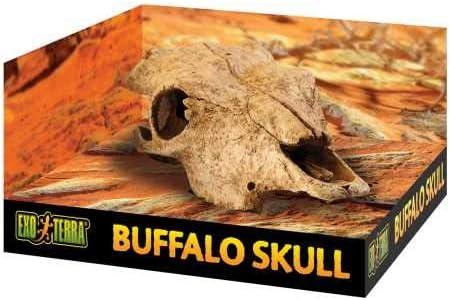 Exo TerraCueva Cráneo de Búfalo