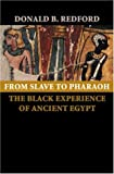 From Slave to Pharaoh: The Black Experience of