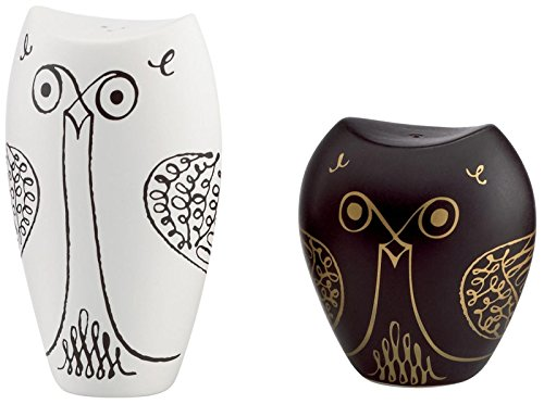 kate spade new york Woodland Park Owl Salt & Pepper Set by Kate Spade New York