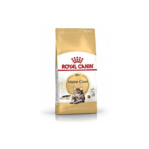 4kg Royal Canin Cat Food Maine Coon 31