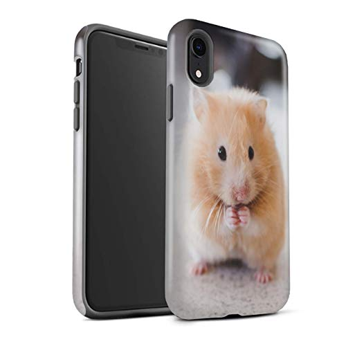 eSwish Gloss Tough Shock Proof Phone Case for Apple iPhone XR/Golden Hamster Design/Cute Pet Animals Collection