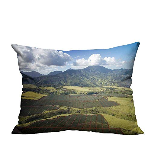 YouXianHome Zippered Pillow Covers Pineapple Field Decorative Couch(Double-Sided Printing) 19.5x60 ()