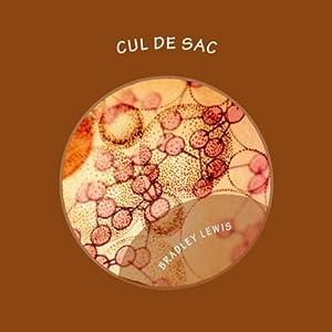 Cul De Sac Audiobook