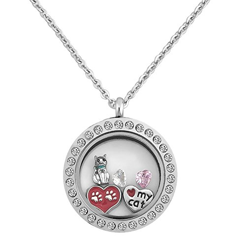 - LovelyCharms Living Memory Cat Paw Print Heart Floating Charm Locket Necklace Pendant With 18'' Chain
