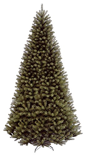 National Tree North Valley 10 Foot Spruce Tree (NRV7-500-100) Spruce Christmas Trees