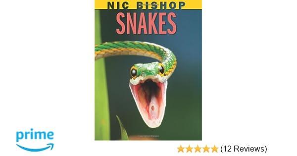 Amazon.com: Nic Bishop Snakes (9780545206389): Nic Bishop: Books