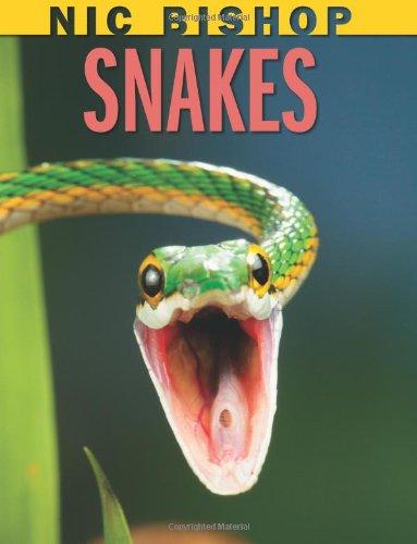 (Nic Bishop Snakes)