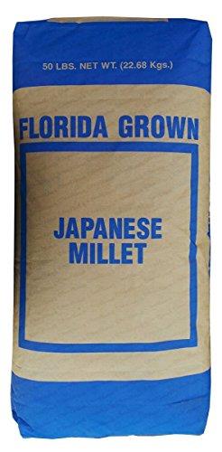 SeedRanch Japanese Millet Seed - 20 Lbs.