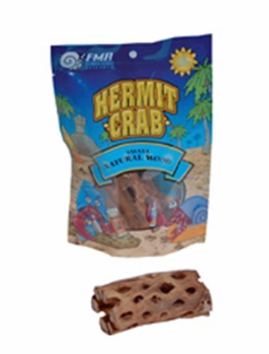 Florida Marine Research Hermit Crab Choya Wood, Small 1 count