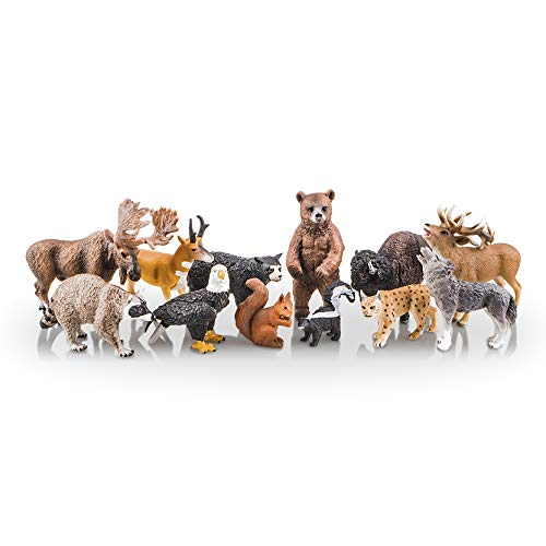 TOYMANY 12PCS North American Forest Animal Figurines, Realistic Safari Animal Figures Set Includes Raccoon,Lynx,Wolf,Bear,Eagle, Educational Toy Cake Toppers Christmas Birthday Gift for Kids Toddlers (Birthday Cake Black Forest)