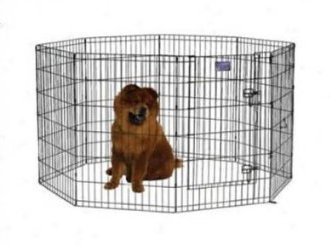 Exercise Pen with Door in Black Finish Size: 42″ H (Large)