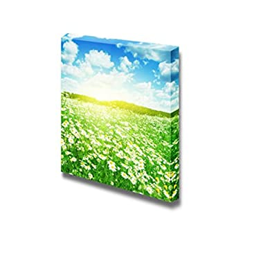 Canvas Prints Wall Art - Beautiful Scenery/Landscape with Daisies on a Sunny Summer Day | Modern Wall Decor/Home Decoration Stretched Gallery Canvas Wrap Giclee Print & Ready to Hang - 24