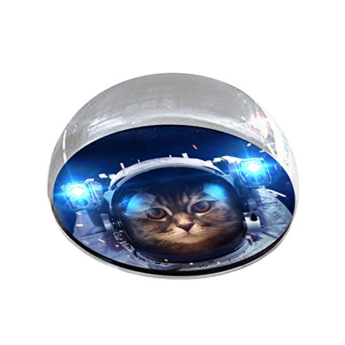 Forever Crystal Astronaut_Cat Magnet Crystal from Forever Crystal