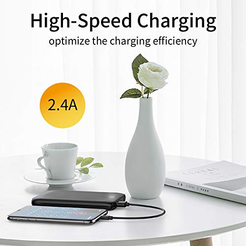 HOPEROAD Portable Charger, Large Capacity 10000mAh Power Bank, 2 USB Ports with LED Indicator, Portable Phone Charger Compatible Battery Pack with iPhone Samsung