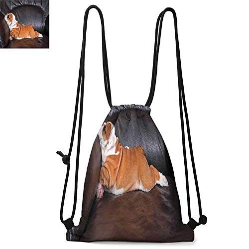 English Bulldog Portable drawstring backpack Puppy Resting on a Sofa Funny Animal Photography Cute Canine For the gym W13.8 x L17.7 Inch Seal Brown White Brown