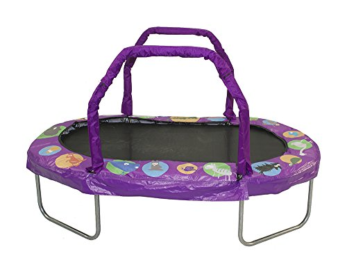 JumpKing Mini Oval Trampoline with Purple Pad, 38″ x 66″ Review