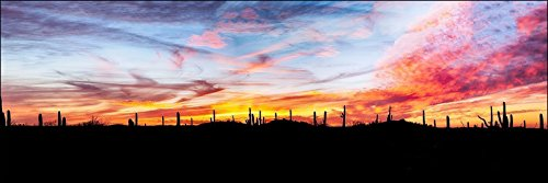 12 x 36 inch panoramic landscape wall art photograph of a colorful red and yellow desert sunset among the Saguaro cactus in Arizona. Gift