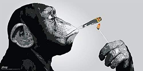 ster/Print (Monkey Smoking A Joint 12x18 inches Rolled ()