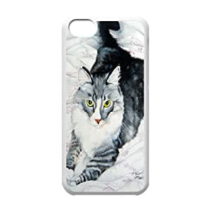 High Quality Phone Back Case Pattern Design 16Grumpy Cat,Because Cats- For Iphone 5c