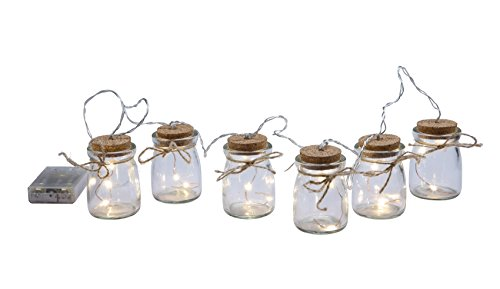 Glass Jars Firefly Light Chain