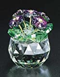 "CRYSTAL WORLD ""African Violet"""