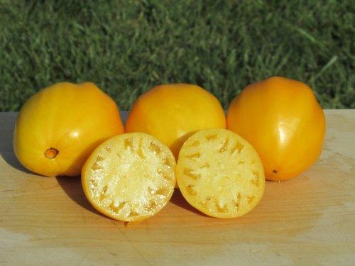 tomato seeds siberia - 6
