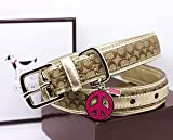 "COACH Mini Signature Leather Collar with Engraveable Peace Charm 60339 Limited Edition - Khaki/Camel, X-Large (22""-26"")"