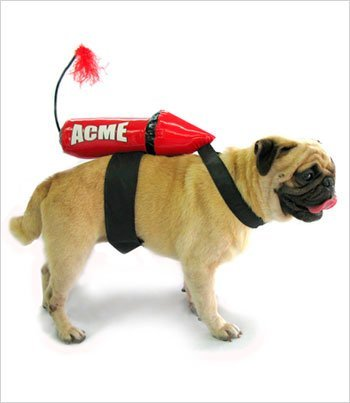 Puppe Love Acme Rocket Dog Costume - Large 12 1/2'' long (16''-21''girth) by Puppe Love