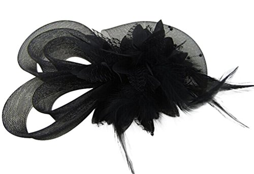 Coolr Women's Fascinators Hat Small Hairpin Feather Mesh Flower Hairclip (Black)